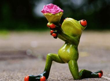 旅行青蛙取什么网名